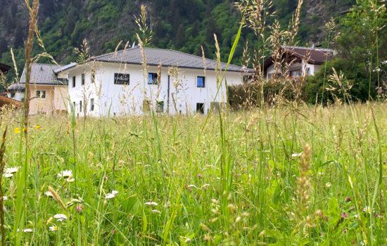 Sommerwiese mit Außenansicht Oskar Apartment Stubaital